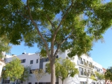 Апартаменты с двумя - тремя спальнями в новом блоке в окрестностях г. Плайя  де Аро